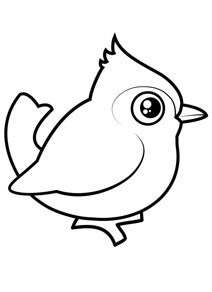 Topmejse Malebog Malebog Fugle